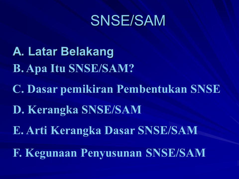 SNSE/SAM SNSE/SAM A.Latar Belakang B. Apa Itu SNSE/SAM.