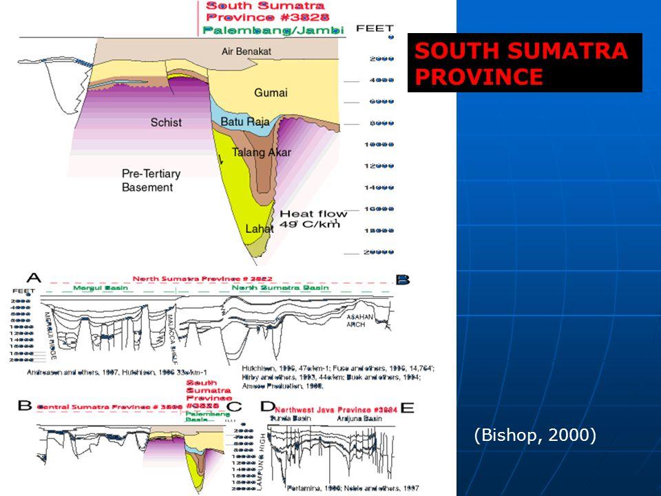 SOUTH SUMATRA PROVINCE
