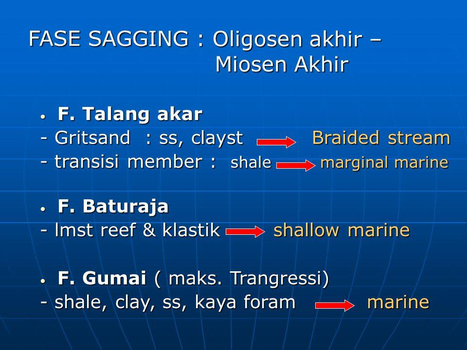 F. Talang akar F. Talang akar - Gritsand : ss, clayst Braided stream - transisi member : shalemarginal marine F. Baturaja F. Baturaja - lmst reef & kl