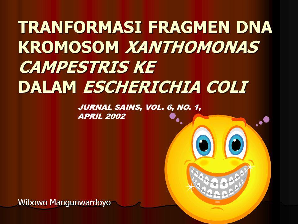 TRANFORMASI FRAGMEN DNA KROMOSOM XANTHOMONAS CAMPESTRIS KE DALAM ESCHERICHIA COLI Wibowo Mangunwardoyo JURNAL SAINS, VOL.