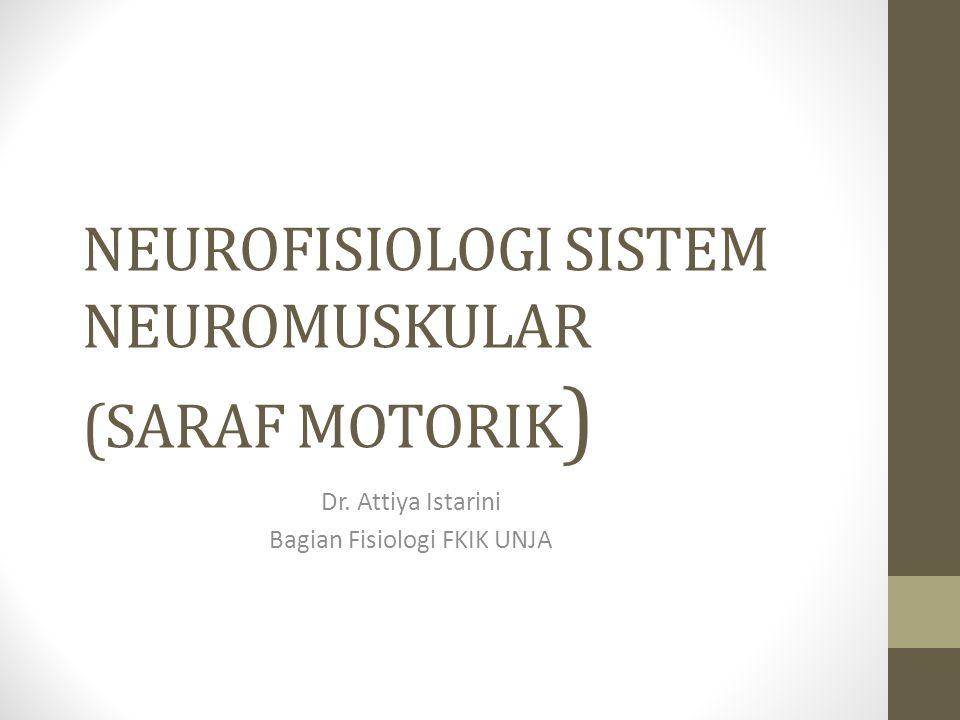 NEUROFISIOLOGI SISTEM NEUROMUSKULAR (SARAF MOTORIK ) Dr. Attiya Istarini Bagian Fisiologi FKIK UNJA