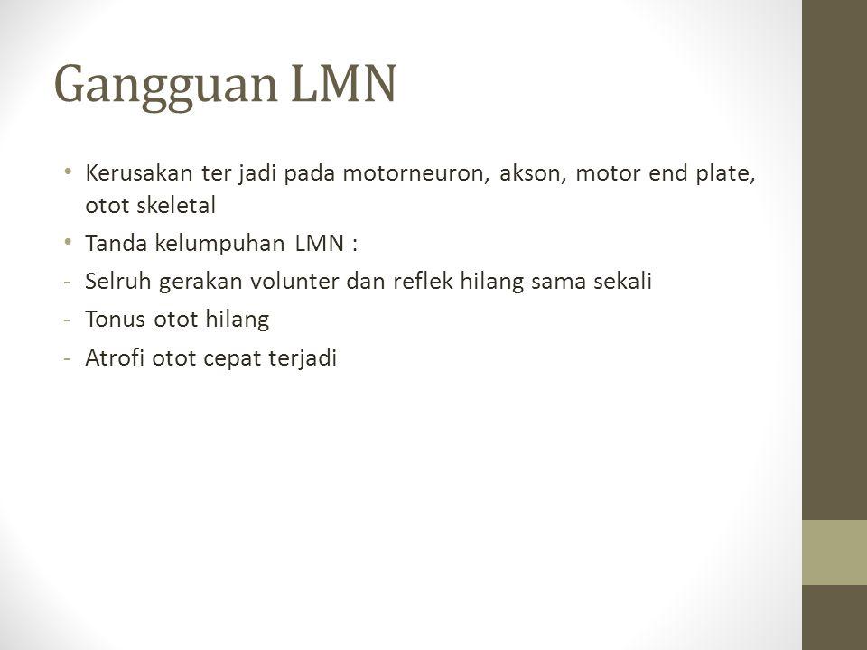 Gangguan LMN Kerusakan ter jadi pada motorneuron, akson, motor end plate, otot skeletal Tanda kelumpuhan LMN : -Selruh gerakan volunter dan reflek hil