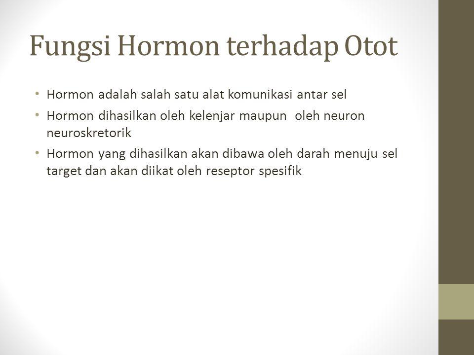Fungsi Hormon terhadap Otot Hormon adalah salah satu alat komunikasi antar sel Hormon dihasilkan oleh kelenjar maupun oleh neuron neuroskretorik Hormo