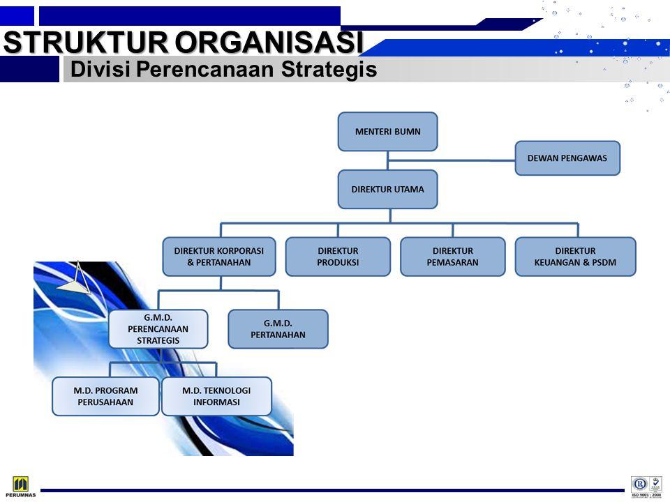 STRUKTUR ORGANISASI Divisi Perencanaan Strategis