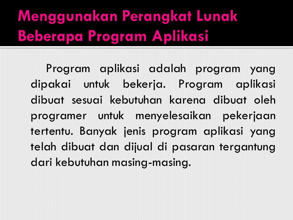 Program aplikasi adalah program yang dipakai untuk bekerja. Program aplikasi dibuat sesuai kebutuhan karena dibuat oleh programer untuk menyelesaikan