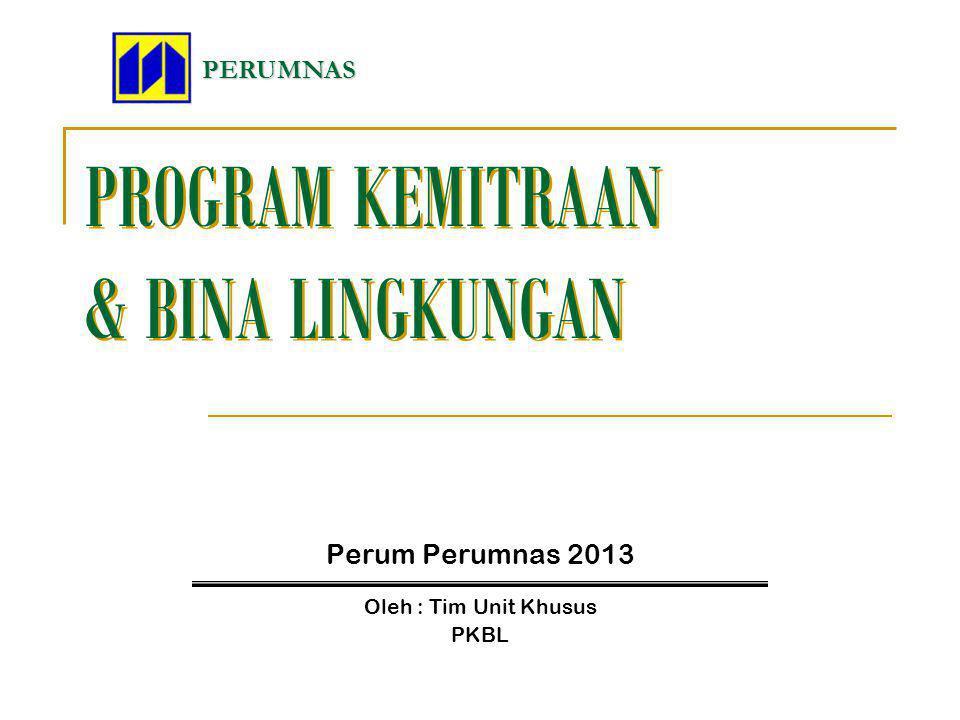 PROGRAM KEMITRAAN & BINA LINGKUNGAN Perum Perumnas 2013 PERUMNAS Oleh : Tim Unit Khusus PKBL