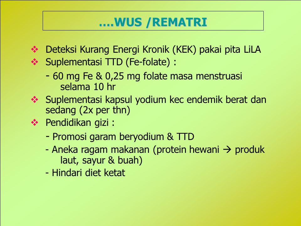 35 ….WUS /REMATRI  Deteksi Kurang Energi Kronik (KEK) pakai pita LiLA  Suplementasi TTD (Fe-folate) : - 60 mg Fe & 0,25 mg folate masa menstruasi selama 10 hr  Suplementasi kapsul yodium kec endemik berat dan sedang (2x per thn)  Pendidikan gizi : - Promosi garam beryodium & TTD - Aneka ragam makanan (protein hewani  produk laut, sayur & buah) - Hindari diet ketat