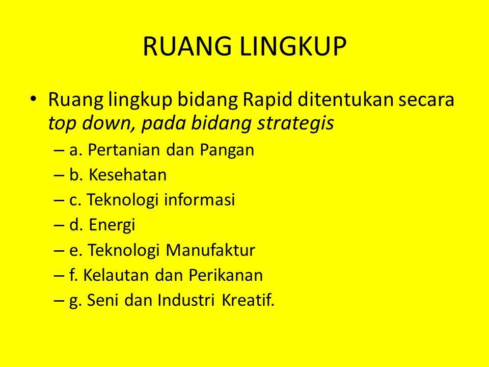 RUANG LINGKUP Ruang lingkup bidang Rapid ditentukan secara top down, pada bidang strategis – a.
