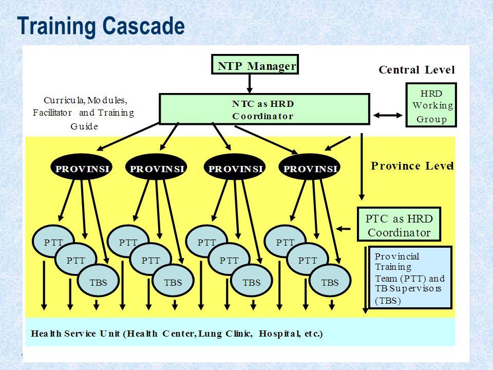 17 Training Cascade