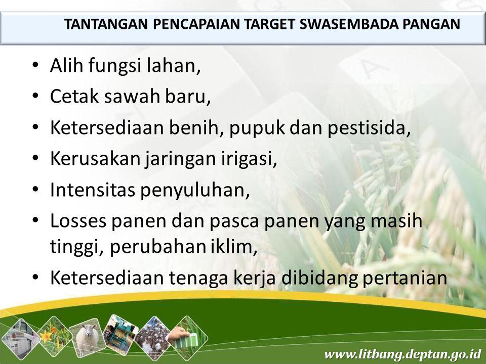 www.litbang.deptan.go.id Alih fungsi lahan, Cetak sawah baru, Ketersediaan benih, pupuk dan pestisida, Kerusakan jaringan irigasi, Intensitas penyuluh