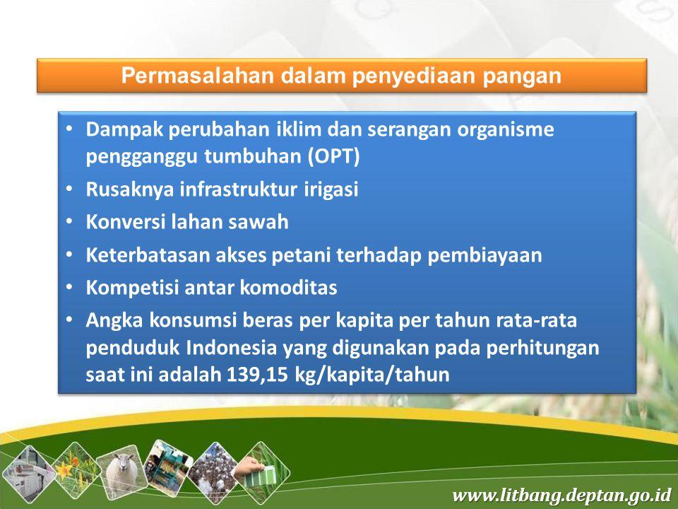 www.litbang.deptan.go.id Permasalahan diversifikasi pangan Tingginya dominasi beras dalam pola konsumsi pangan penduduk Indonesia menyebabkan rendahnya kualitas konsumsi pangan nasional dan cerminan konsumsi pangan penduduk yang belum beragam dan bergizi seimbang dengan indikator skor PPH yang masih di bawah standar ideal.