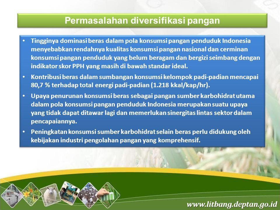 www.litbang.deptan.go.id Permasalahan diversifikasi pangan Tingginya dominasi beras dalam pola konsumsi pangan penduduk Indonesia menyebabkan rendahny