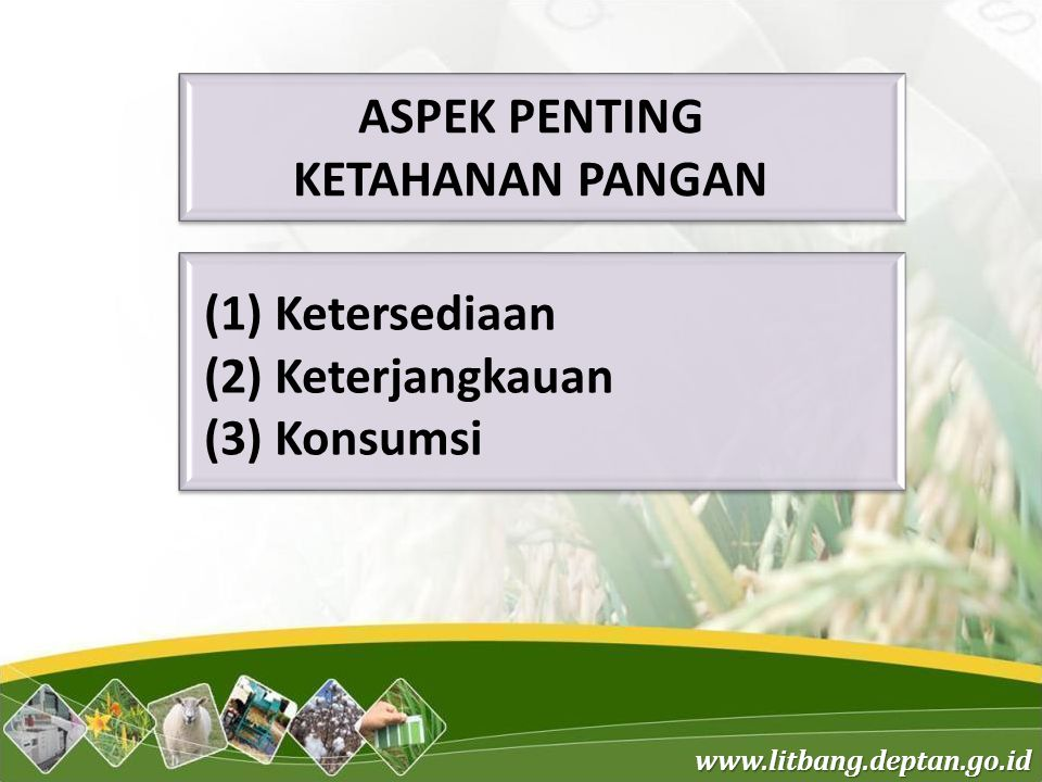 www.litbang.deptan.go.id (1) Ketersediaan (2) Keterjangkauan (3) Konsumsi ASPEK PENTING KETAHANAN PANGAN