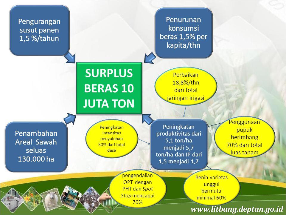 www.litbang.deptan.go.id SURPLUS BERAS 10 JUTA TON Penurunan konsumsi beras 1,5% per kapita/thn Pengurangan susut panen 1,5 %/tahun Perbaikan 18,8%/th