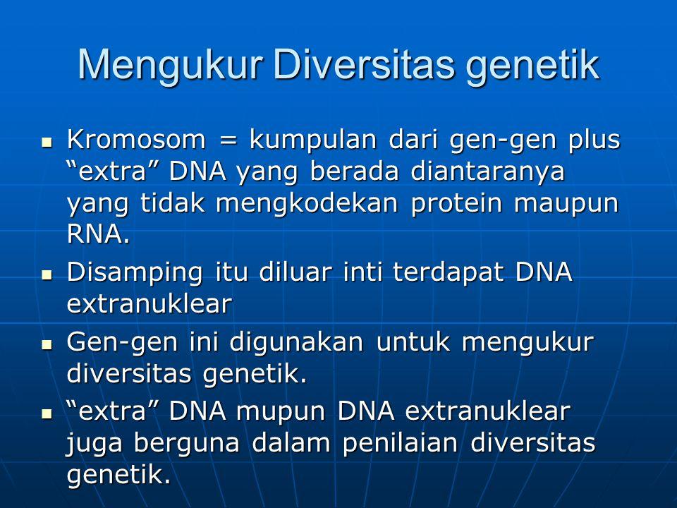 "Mengukur Diversitas genetik Kromosom = kumpulan dari gen-gen plus ""extra"" DNA yang berada diantaranya yang tidak mengkodekan protein maupun RNA. Kromo"
