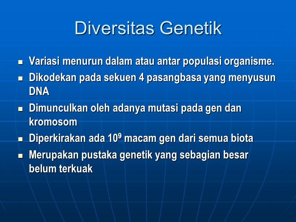 Diversitas Genetik Variasi menurun dalam atau antar populasi organisme. Variasi menurun dalam atau antar populasi organisme. Dikodekan pada sekuen 4 p