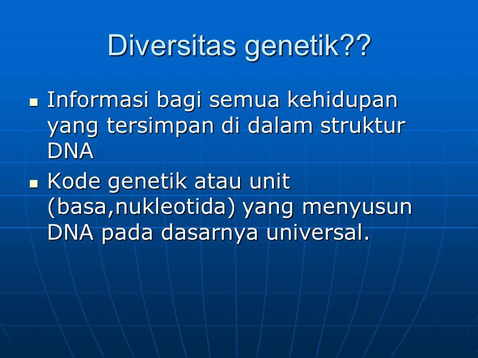 Diversitas genetik?? Informasi bagi semua kehidupan yang tersimpan di dalam struktur DNA Informasi bagi semua kehidupan yang tersimpan di dalam strukt