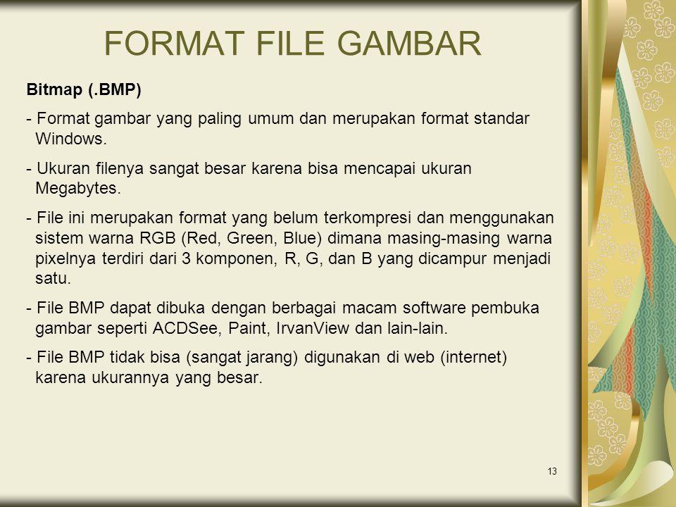 13 FORMAT FILE GAMBAR Bitmap (.BMP) - Format gambar yang paling umum dan merupakan format standar Windows. - Ukuran filenya sangat besar karena bisa m