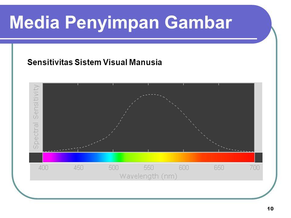 10 Sensitivitas Sistem Visual Manusia Media Penyimpan Gambar