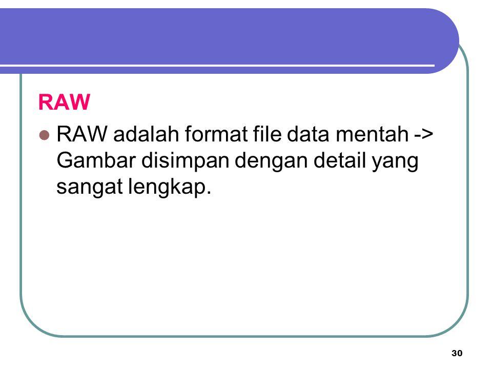 30 RAW RAW adalah format file data mentah -> Gambar disimpan dengan detail yang sangat lengkap.