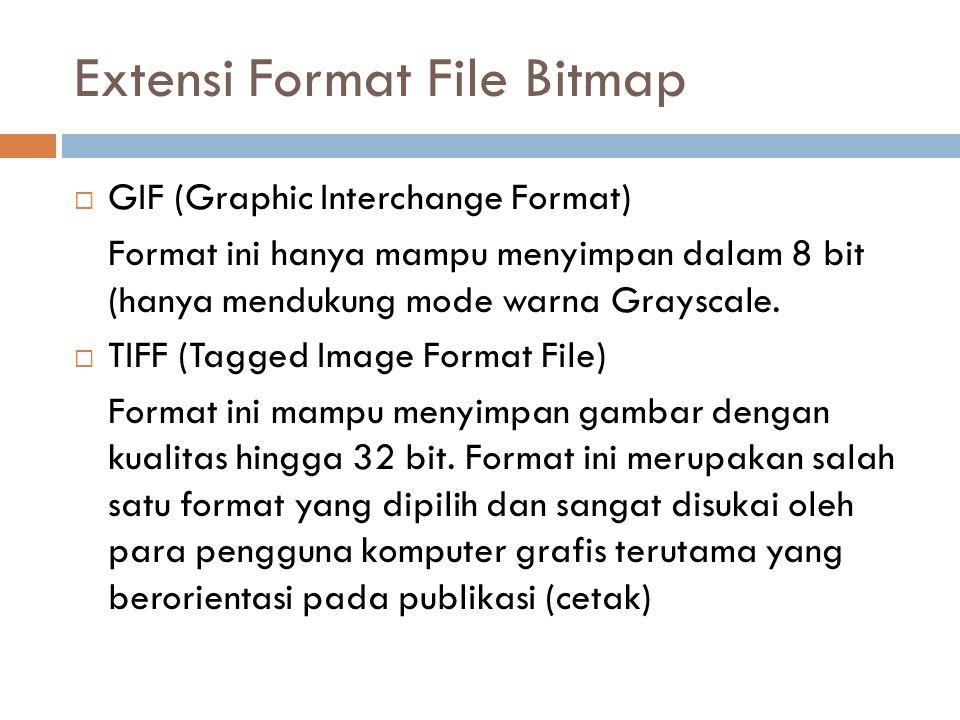  GIF (Graphic Interchange Format) Format ini hanya mampu menyimpan dalam 8 bit (hanya mendukung mode warna Grayscale.