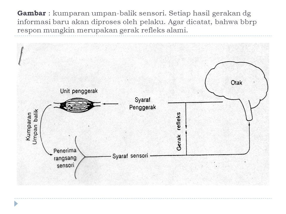 Gambar : kumparan umpan-balik sensori. Setiap hasil gerakan dg informasi baru akan diproses oleh pelaku. Agar dicatat, bahwa bbrp respon mungkin merup