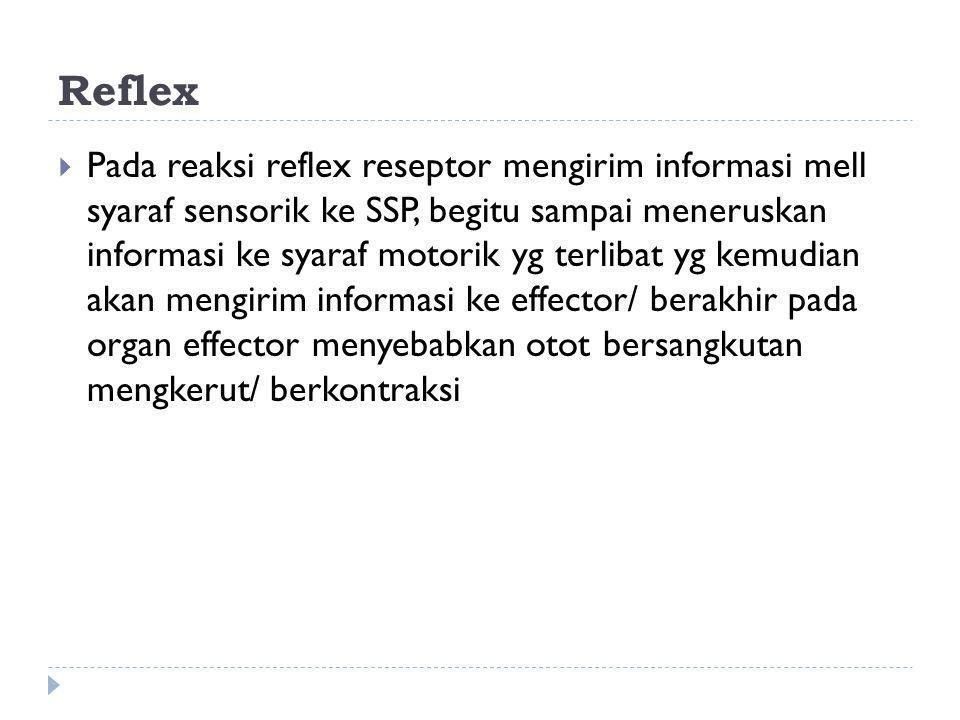 Reflex  Pada reaksi reflex reseptor mengirim informasi mell syaraf sensorik ke SSP, begitu sampai meneruskan informasi ke syaraf motorik yg terlibat