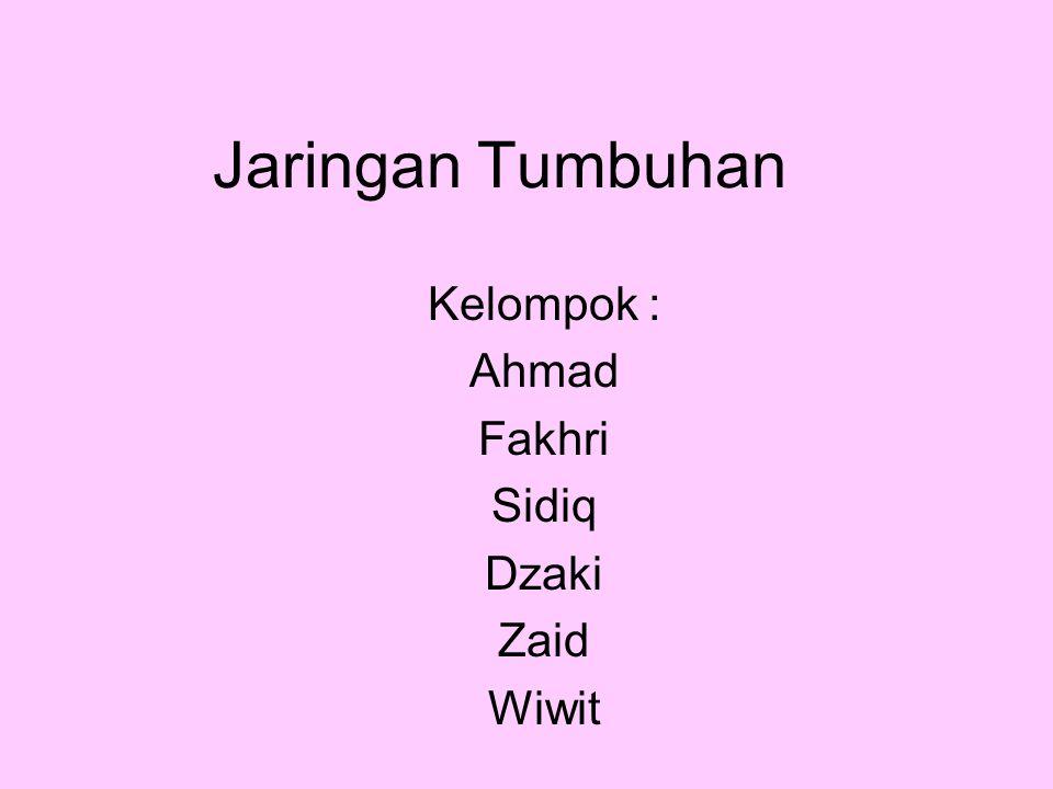 Jaringan Tumbuhan Kelompok : Ahmad Fakhri Sidiq Dzaki Zaid Wiwit