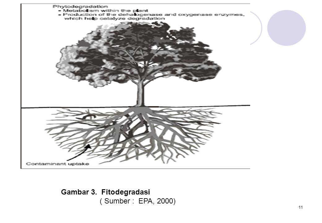 11 Gambar 3. Fitodegradasi ( Sumber : EPA, 2000)