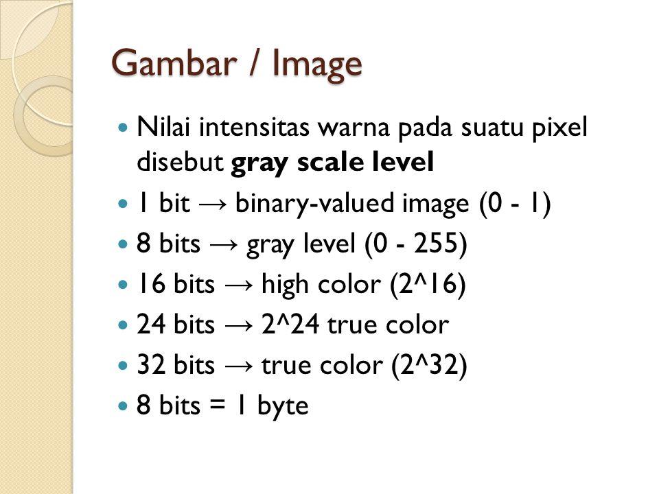 Gambar / Image Nilai intensitas warna pada suatu pixel disebut gray scale level 1 bit → binary-valued image (0 - 1) 8 bits → gray level (0 - 255) 16 bits → high color (2^16) 24 bits → 2^24 true color 32 bits → true color (2^32) 8 bits = 1 byte