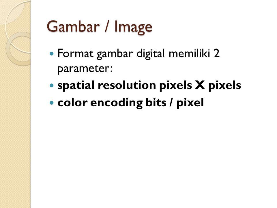 Gambar / Image Format gambar digital memiliki 2 parameter: spatial resolution pixels X pixels color encoding bits / pixel
