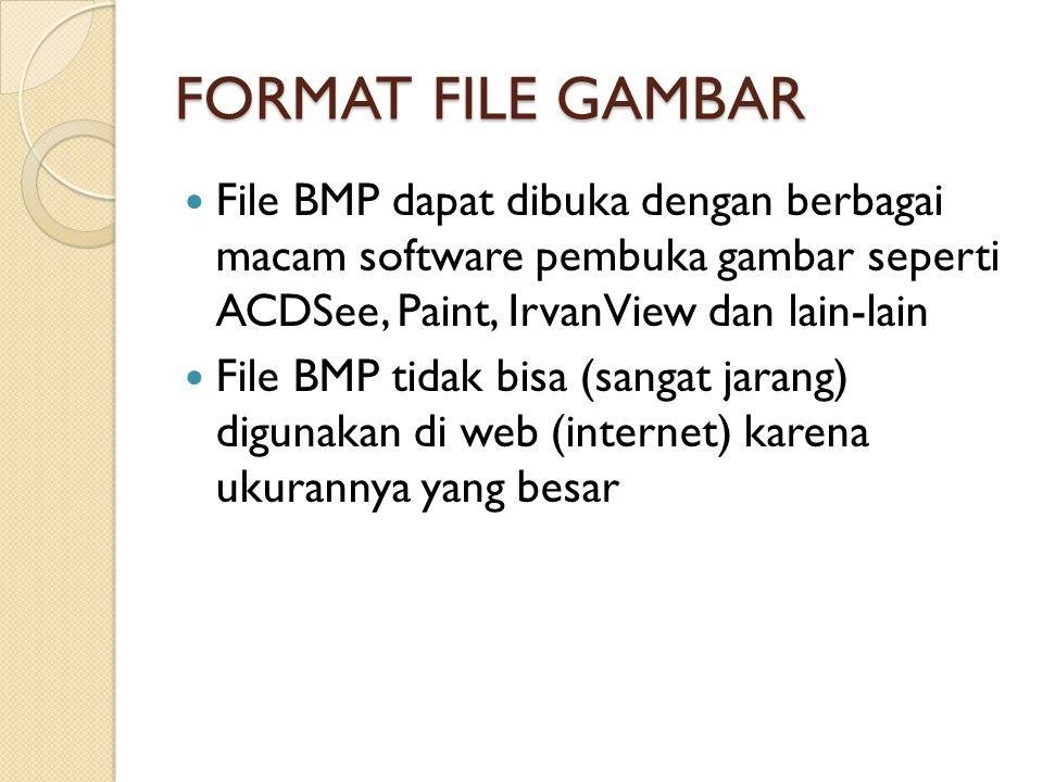 FORMAT FILE GAMBAR File BMP dapat dibuka dengan berbagai macam software pembuka gambar seperti ACDSee, Paint, IrvanView dan lain-lain File BMP tidak bisa (sangat jarang) digunakan di web (internet) karena ukurannya yang besar