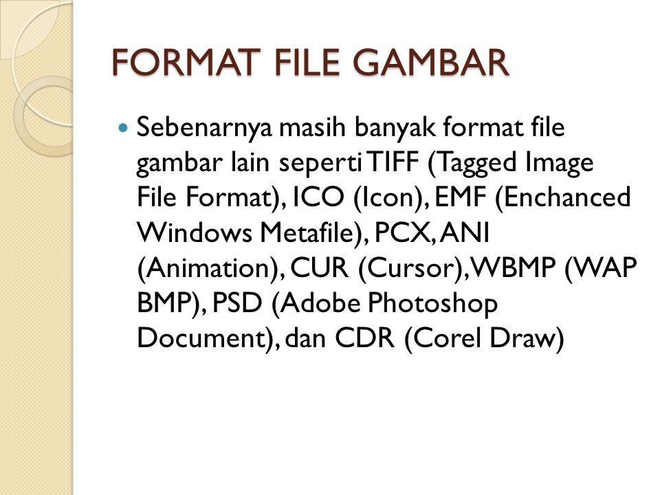 FORMAT FILE GAMBAR Sebenarnya masih banyak format file gambar lain seperti TIFF (Tagged Image File Format), ICO (Icon), EMF (Enchanced Windows Metafil