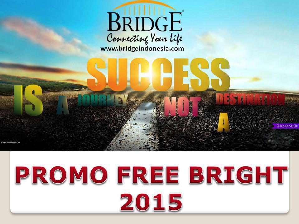 www.bridgeindonesia.com