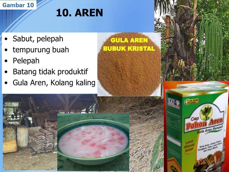 10. AREN Sabut, pelepah tempurung buah Pelepah Batang tidak produktif Gula Aren, Kolang kaling Gambar 10