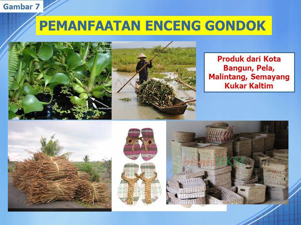 PEMANFAATAN ENCENG GONDOK Produk dari Kota Bangun, Pela, Malintang, Semayang Kukar Kaltim Gambar 7