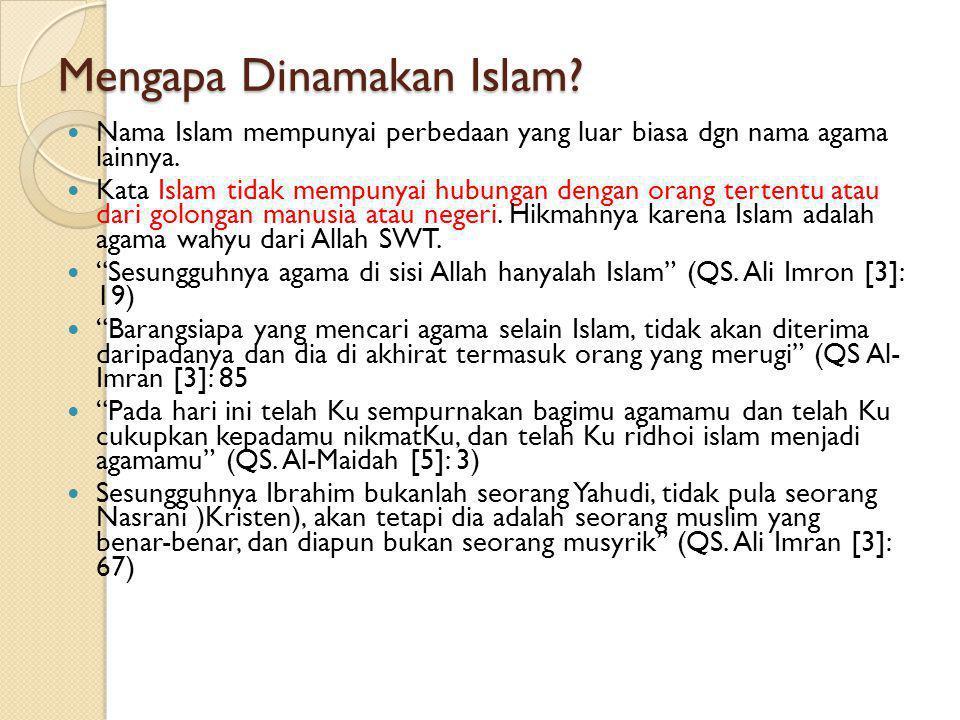MENGENAL ISLAM MENGAPA DINAMAKAN ISLAM.