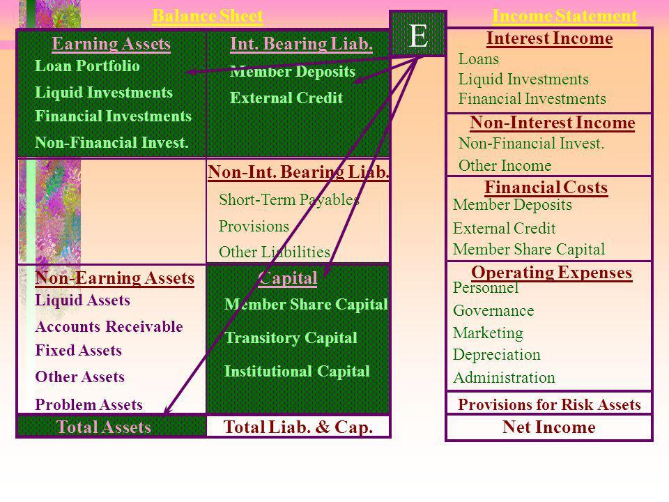 E 8 Tujuan : Mengukur prosentase modal lembaga dari total aset. Formula : Jumlah Modal Lembaga ----------------------------------- X 100 % Total Aset