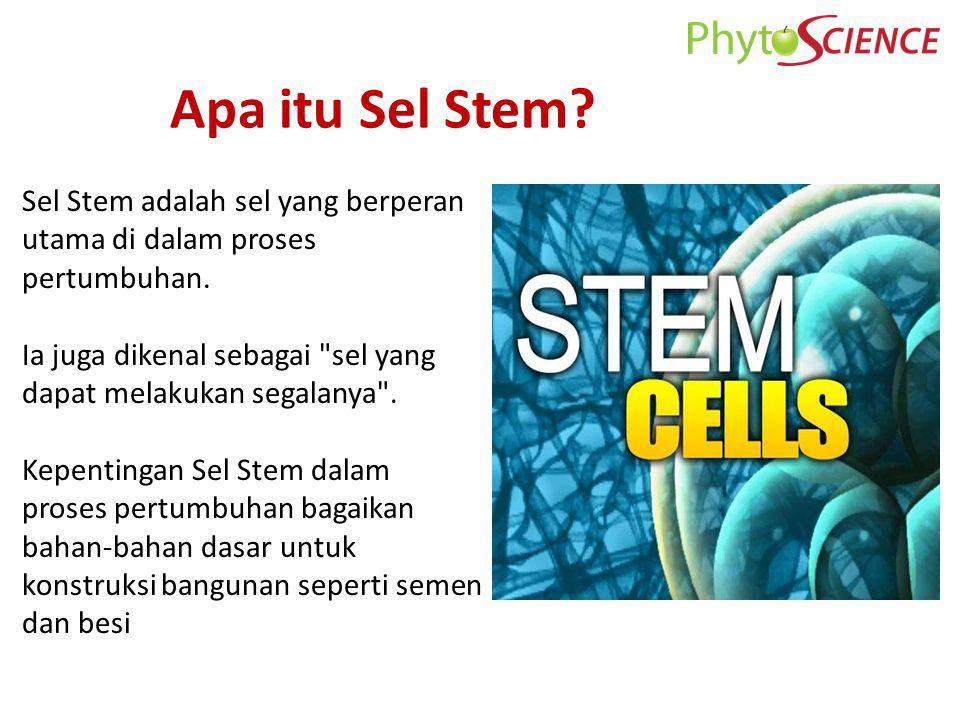 $2.5 B illion $3.1 Billion $3.9 Billion $5.1 Billion 2000 2003 2005 2007 Potential of Stem Cell Stem Cell (Potential) Akan datang..