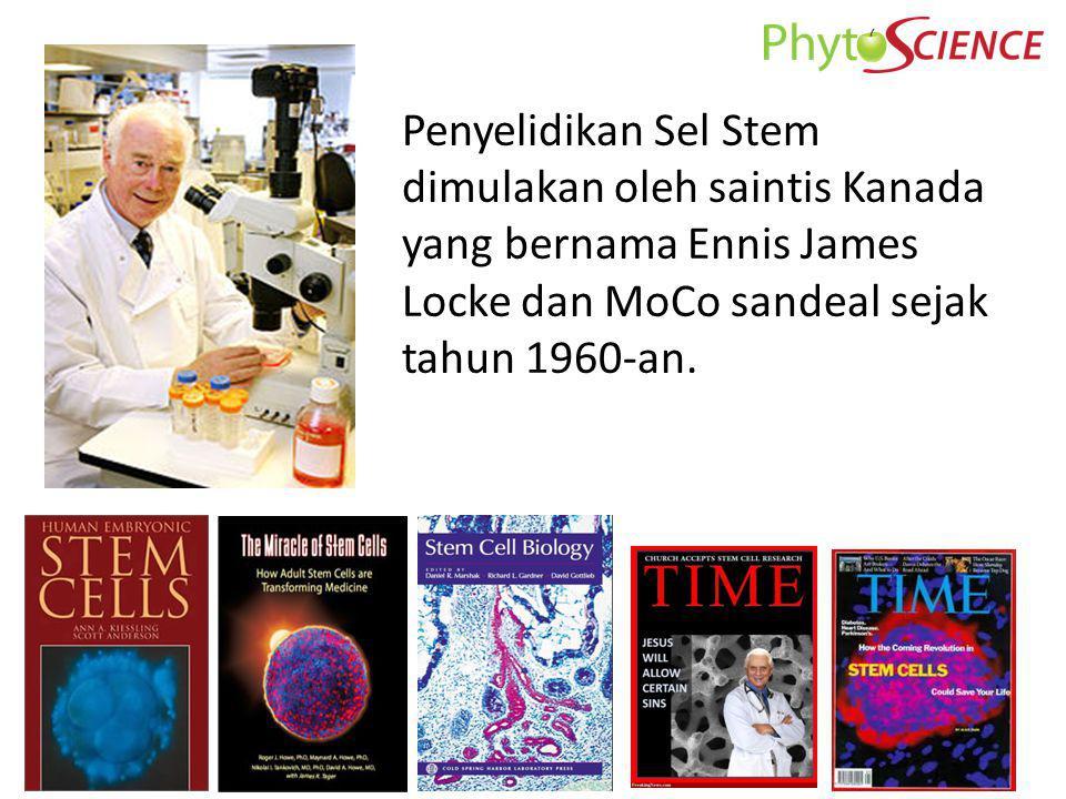 Ovum Sperm + Sel Stem Embrio (Embryonic Stem Cell): Di dalam proses kelahiran embrio, Sel Stem embrio dapat berkembang menjadi sel-sel yang berbeda, ia adalah sel yang paling dasar.