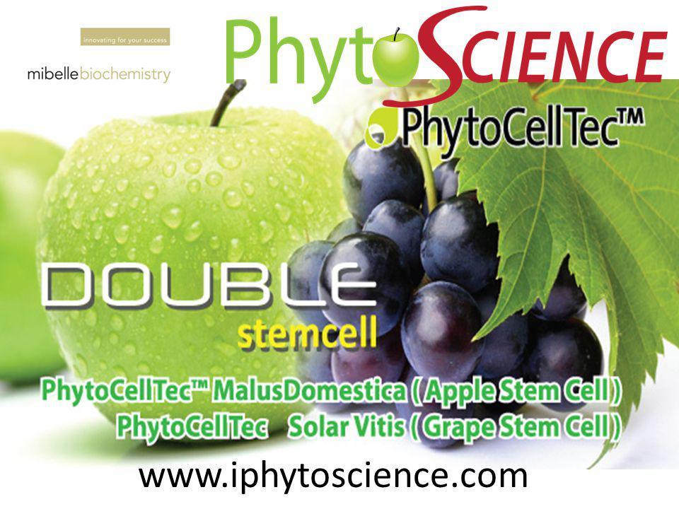 APPLE STEMCELL PhytoCellTec Malus Domestica GRAPE STEM CELL PhytoCellTec Solar Vitis ARGAN STEM CELL PhytoCellTec Argan Anti-Aging UV Protection ARGAN STEM CELL PhytoCellTec Argan DermCom meningkatkan pertumbuhan faktor untuk karatinocyte pertumbuhan, jaringan memperbaiki dan menghubungkan antara epidermis dan dermis Argan sel induk menyerap melalui pori untuk dermis kemudian menghasilkan lebih fibroblast dan memproduksi kolagen dan elastin untuk membuatnya penguatan.