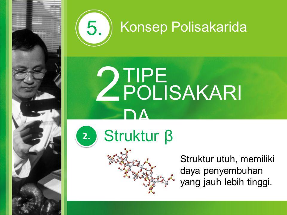 5. Konsep Polisakarida 2 TIPE POLISAKARI DA Struktur utuh, memiliki daya penyembuhan yang jauh lebih tinggi. 2. Struktur β