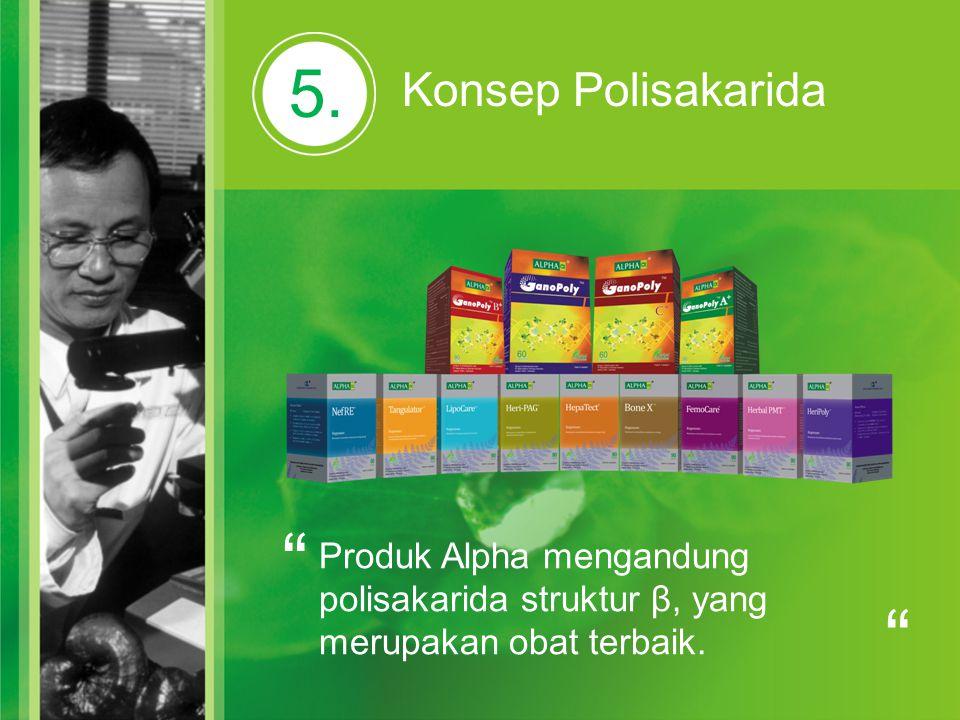 """5. Konsep Polisakarida """" Produk Alpha mengandung polisakarida struktur β, yang merupakan obat terbaik. """""""
