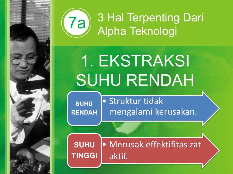 7a. 3 Hal Terpenting Dari Alpha Teknologi 1. EKSTRAKSI SUHU RENDAH Struktur tidak mengalami kerusakan. SUHU RENDAH Merusak effektifitas zat aktif. SUH