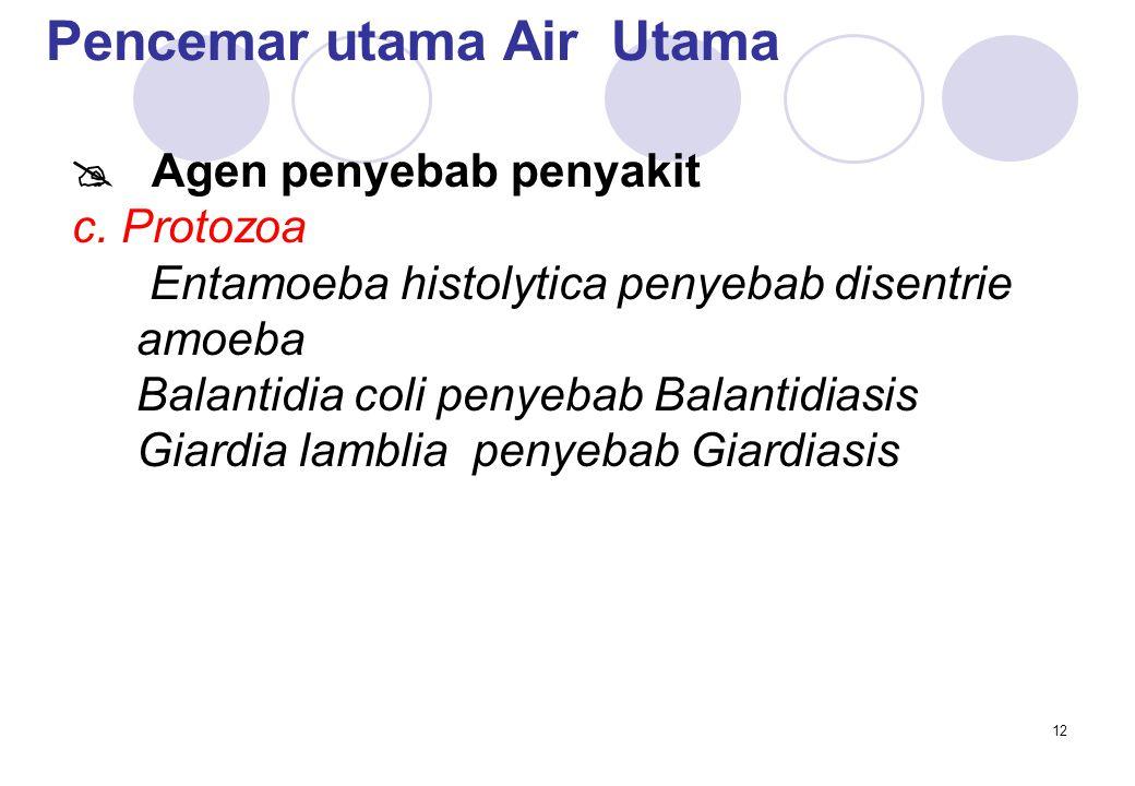 12 Pencemar utama Air Utama  Agen penyebab penyakit c.