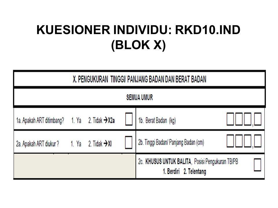 KUESIONER INDIVIDU: RKD10.IND (BLOK X)