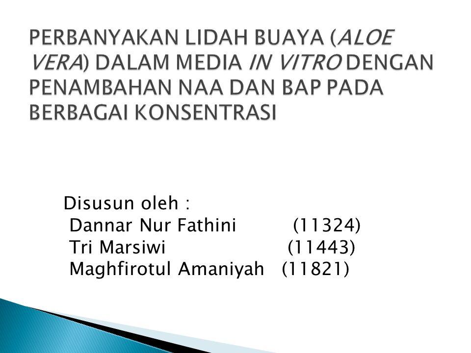 Disusun oleh : Dannar Nur Fathini (11324) Tri Marsiwi (11443) Maghfirotul Amaniyah (11821)