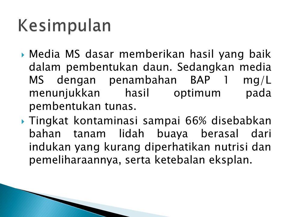 Media MS dasar memberikan hasil yang baik dalam pembentukan daun. Sedangkan media MS dengan penambahan BAP 1 mg/L menunjukkan hasil optimum pada pem