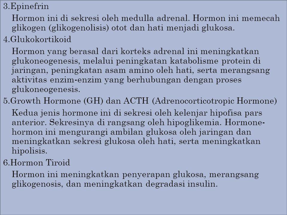3.Epinefrin Hormon ini di sekresi oleh medulla adrenal. Hormon ini memecah glikogen (glikogenolisis) otot dan hati menjadi glukosa. 4.Glukokortikoid H