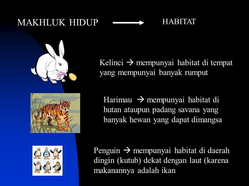 Kelinci  mempunyai habitat di tempat yang mempunyai banyak rumput Harimau  mempunyai habitat di hutan ataupun padang savana yang banyak hewan yang d